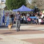 שוטר מפעיל כלב משטרה