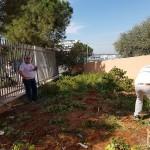 טיפול בהכשרת אדמת הגינה